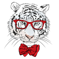 Vector tiger wearing glasses with hearts. St. Valentine's Day. Hipster. Greeting card with a tiger. Print.