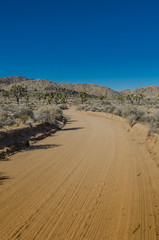 Fototapete - Sandy Dirt Road with Clear Sky