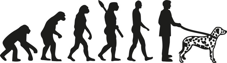 Dalmatian evolution