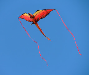 Dragon kite with streamers