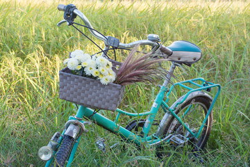 green retro bicycle with basket and white flowers