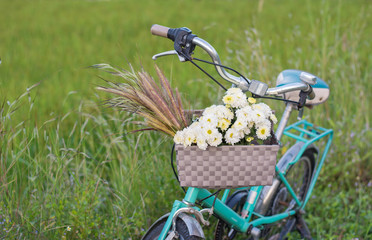 green retro bicycle with basket