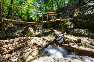 Wooden bridge through the forest river