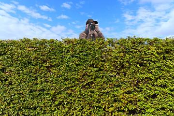 Paparazzi hinter der Hecke