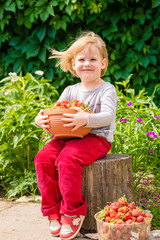 Little girl sit on tree  stump and hold in hands the  big bowl of strawberries. Sunny summer day on countryside village.