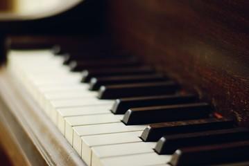 Piano keys in natural light