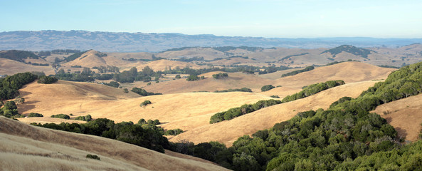 The drought-stricken hills of Sonoma County California are the ideal environment for growing grapes and managing ranches.
