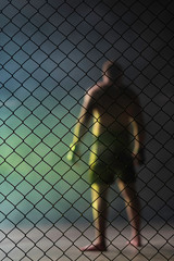 The Fighter in the ring with fence.