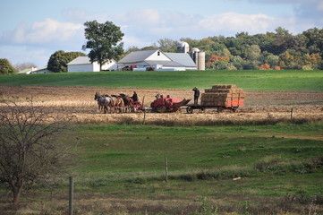 Lancaster County, Pennsylvania - October 16, 2015:  Amish woman driving a team of four horses with her son riding on a hay bale wagon working at their farm