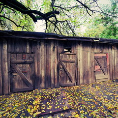 ruins of an old wooden barn