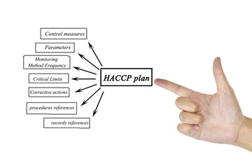 Women hand writing element of HACCP plan for business concept and use in manufacturing