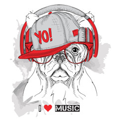 The image of the dog in the glasses, headphones and in hip-hop hat. Vector illustration.
