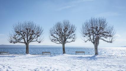 winter scenery at Tutzing Bavaria