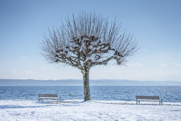 winter scenery at Tutzing Bavaria