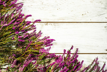 Flowers of heather on wooden background