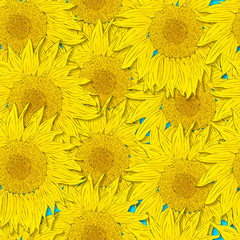 Sunflower seamless pattern. Bright yellow flowers on a blue back