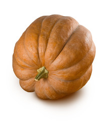 Isolated image of a ripe pumpkin closeup
