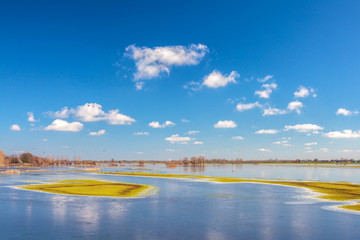 Flooded field in front of the Dutch river IJssel
