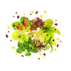 Bunte Blattsalate mit Essig und Öl