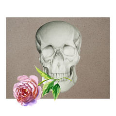 Skull and Flowers Day of The Dead, Vintage illustration