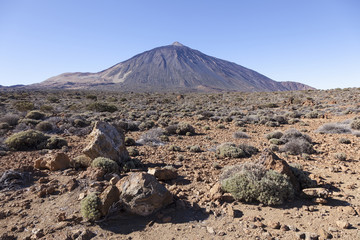 dry landscape of national park with peak of El Teide volcano as
