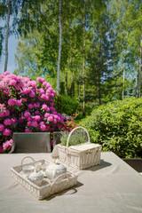 Picnic kit in domicile garden