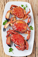 Steamed crabs on appetizer plate with herbs,top view