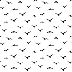 Silhouette of birds on a white background