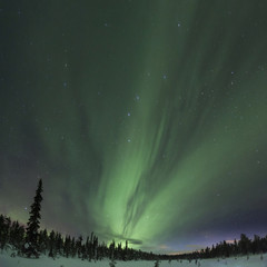 Spectacular aurora borealis (northern lights) over a path through winter landscape in Finnish Lapland.