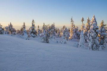 Winter landscape on a sunset. Mountains, Finland.