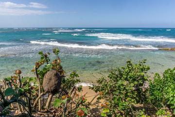 Beautiful Scenic beach scene