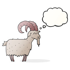 thought bubble cartoon goat