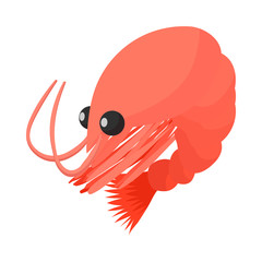 Shrimp icon, cartoon style