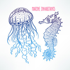 hand-drawn seahorse and jellyfish