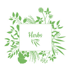 Fresh herbs store emblem. Green square frame with collection of plants. Silhouette of branches isolated on white background