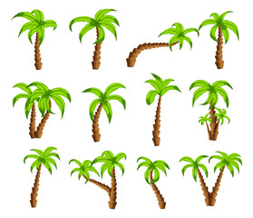 Cartoon green palm trees on a white background. Set of isolated funny cartoon tropical trees patterns icons, for filling your sky scenes or the game interface backgrounds, Vector