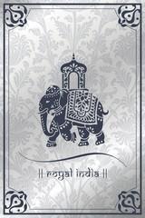Foto op Aluminium Vogels in kooien Elephant, festival , Jaipur, Royal Rajasthan, India, Asia