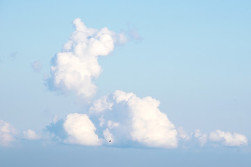 Clouds in the sky shaped like a rabbit.