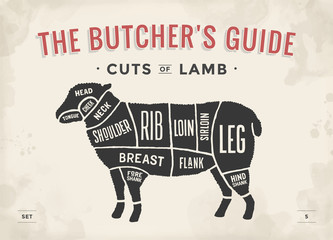 Cut of beef set. Poster Butcher diagram and scheme - Lamb. Vintage typographic hand-drawn. Vector illustration.