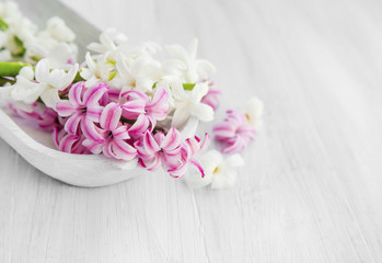 White and pink hyacinth flowers .Spa setting