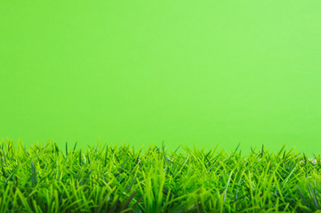 green grass on a green background