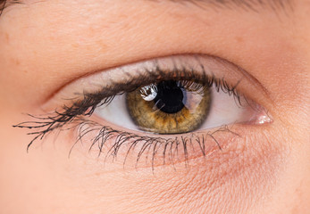 Woman eye with long eyelashes.