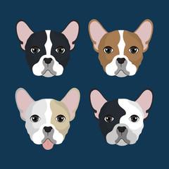 bulldog breed design