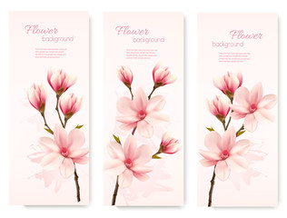 Banners with beautiful cherry blossom flowers. Vector.