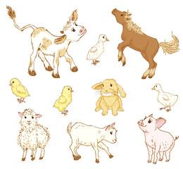 Farm baby animals.