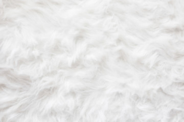 De-focused Sheep wool fur background texture wallpaper. Wall mural
