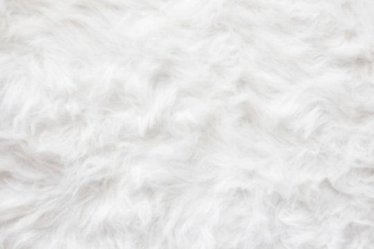 De-focused Sheep wool fur background texture wallpaper.