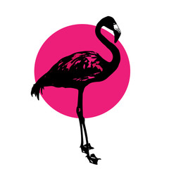 silhouette of a flamingo
