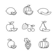 Fruit icons thin line art set