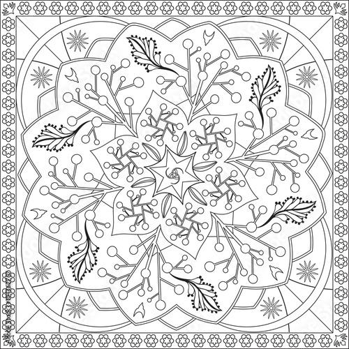 Page Coloriage Pour Adultes Livre Design Motif Floral Mandala